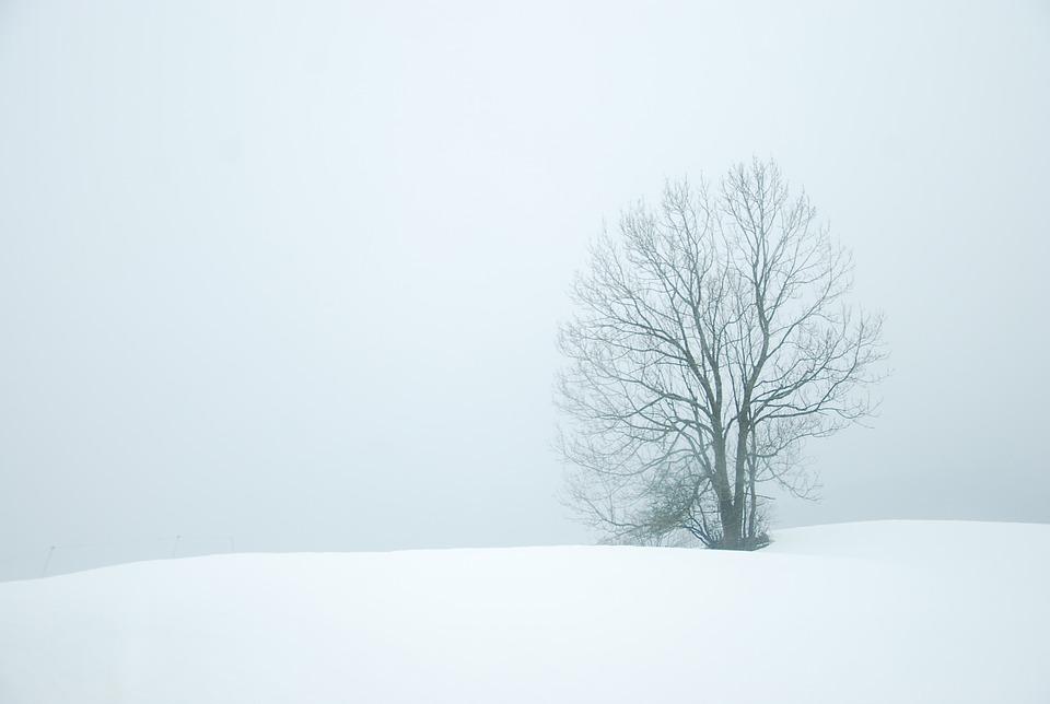 winter-872174_960_720