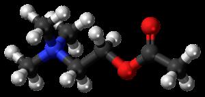 アセチルコリン セロトニン