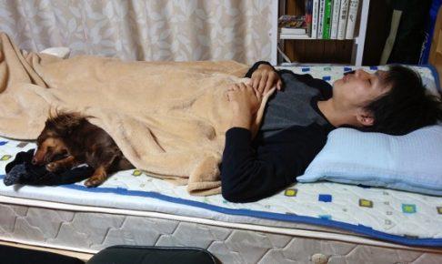 星野良輔ベッド