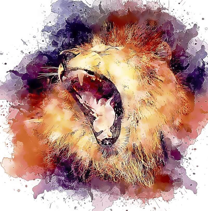 lion-3522954_1280